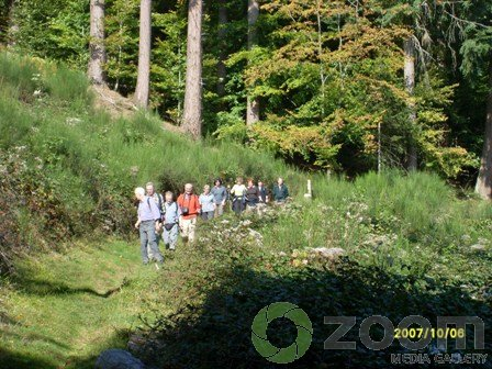 herbst2007-elsass-024.jpg