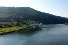 Mosel 2011 Montag