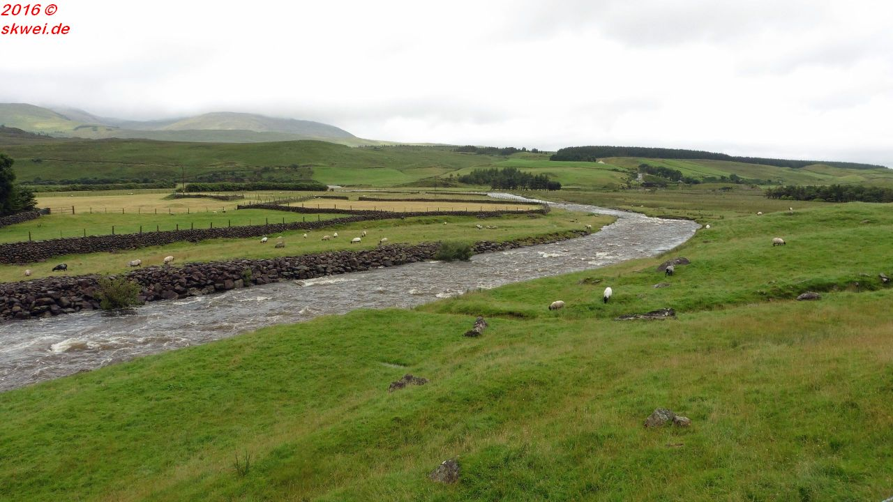 rivererriff