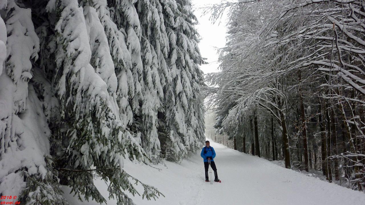 Schneeschuhwanderung Mommelstein_006