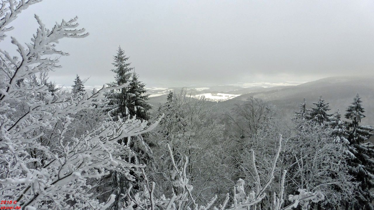Schneeschuhwanderung Mommelstein_008