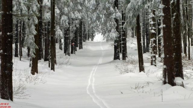 Schneeschuhwanderung Mommelstein_020