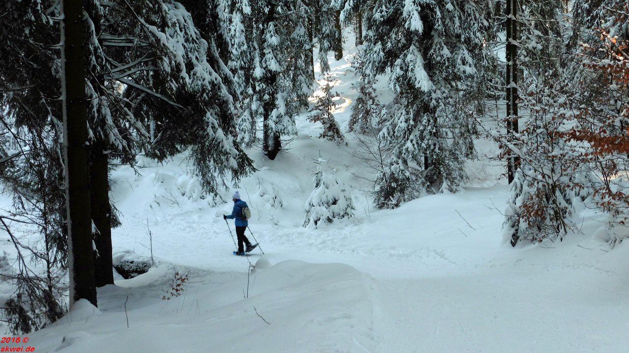 Schneeschuhwanderung Tanzbuche