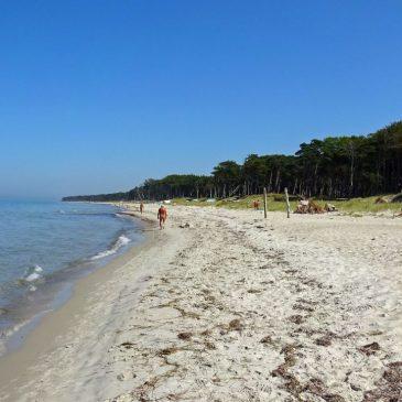 Sommer, Sonne, Strand und Meer – eine Woche Ostsee