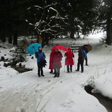 Winterwanderung im (Schnee-)Regen zur Ebertwiese
