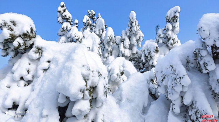 winterEA