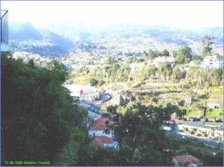 Madeira-001