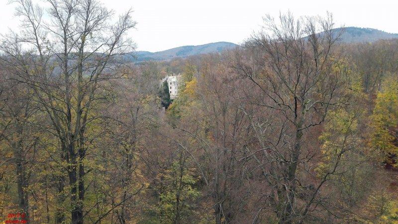Blick auf Schloss Altenstein