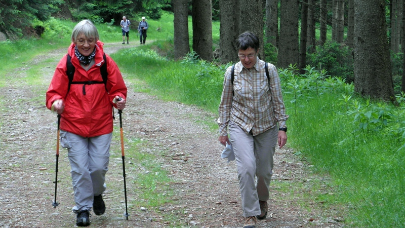 Wanderung zum Schneekopf 2012