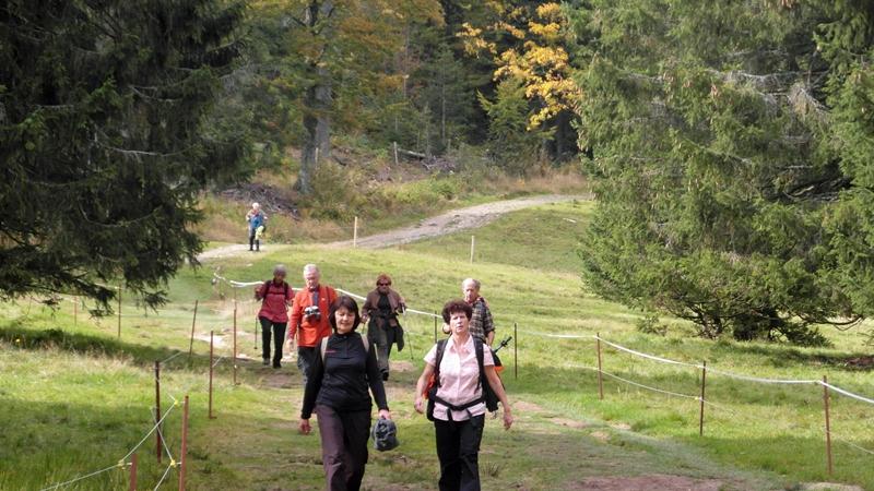 Wandern im Schwarzwald - 4. Tag und Abreise